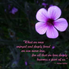 """...all that we love deeply becomes a part of us."""