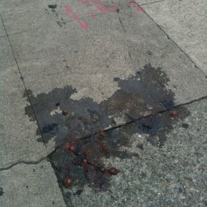 Smashed Fruit on the Sidewalk P is for Powerless