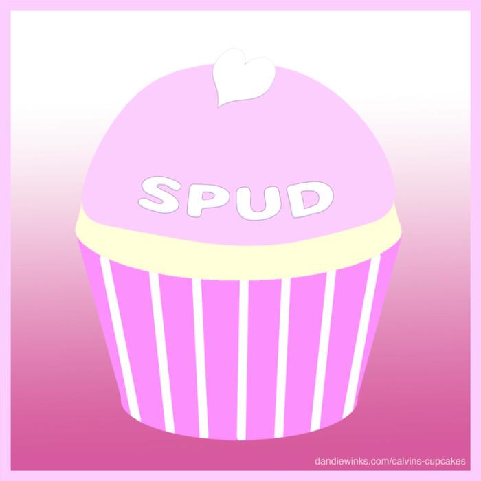 Spud's remembrance cupcake