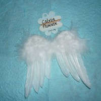 Calvin's angel wings